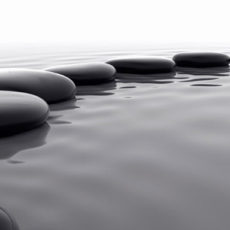 Meditation and Mindfullness*